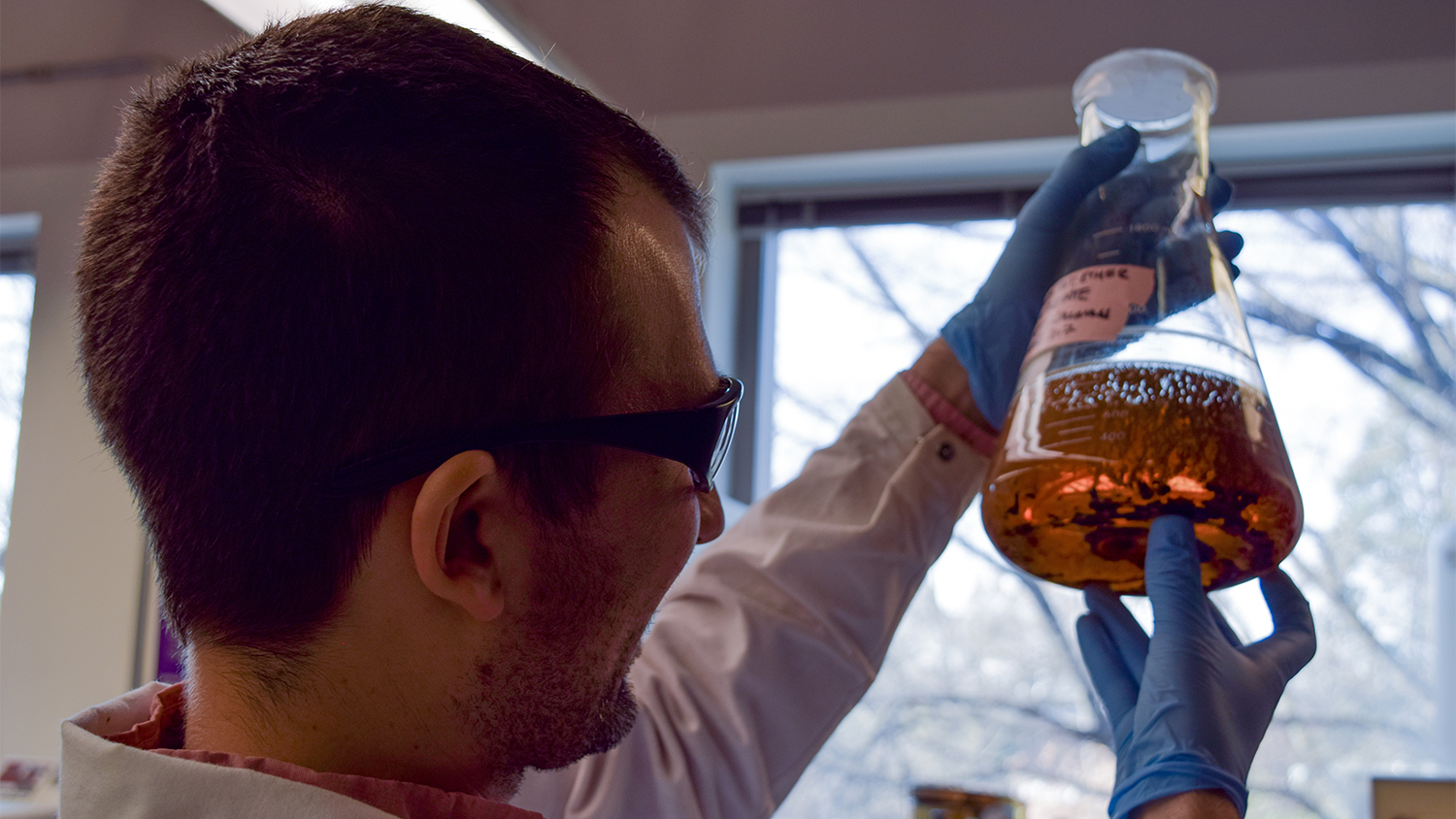 Exploring Jet Fuel from Trees - Bioenergy Research - Forest Biomaterials at NC State University