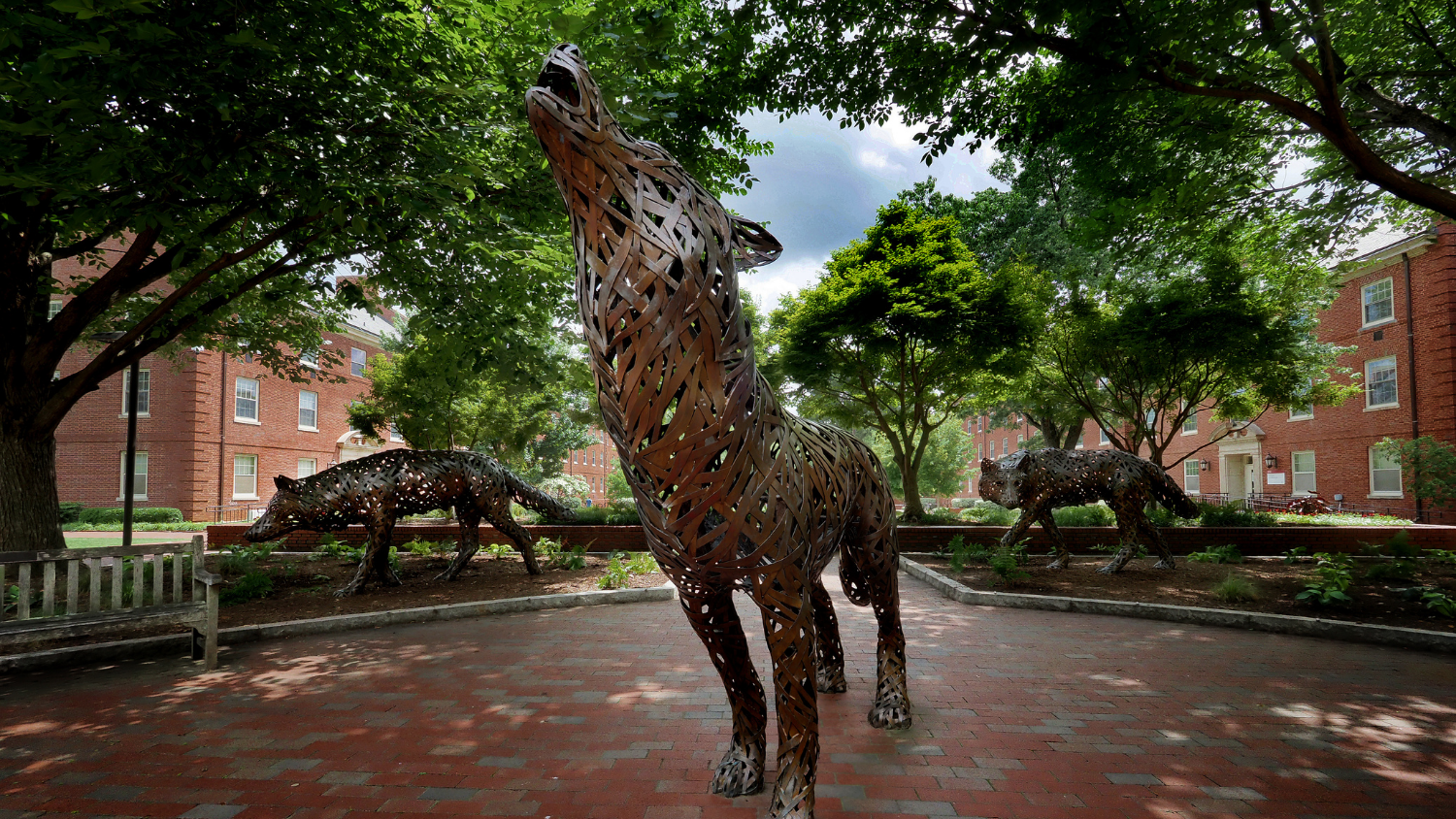 Wolf Statue - Newly Elected GSA Officers Promote DEIJ and Soft Skills for Graduate Students - Forest Biomaterials NC State University