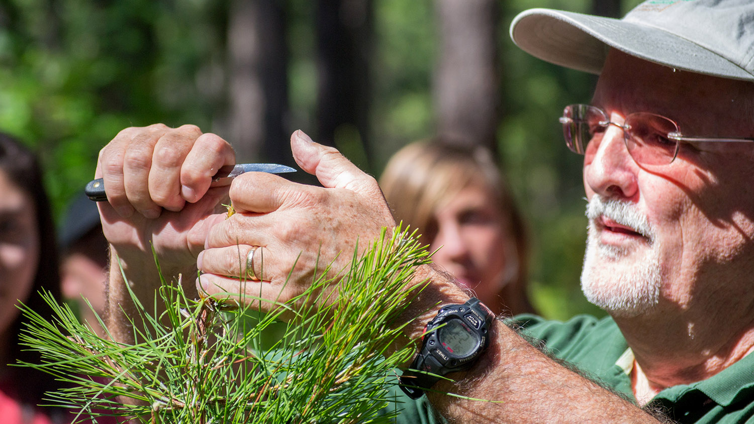 Tree demo - About - Forestry and Environmental Resources Spotlight: William Casola - Forestry and Environmental Resources NCState University