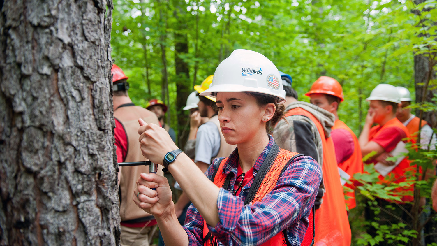 student in the field in the forest - About - Forestry and Environmental Resources Spotlight: William Casola - Forestry and Environmental Resources NCState University