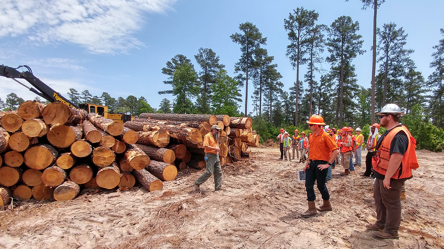 Summer Camp - Forestry Programs - Forestry and Environmental Resources Spotlight: William Casola - Forestry and Environmental Resources NCState University