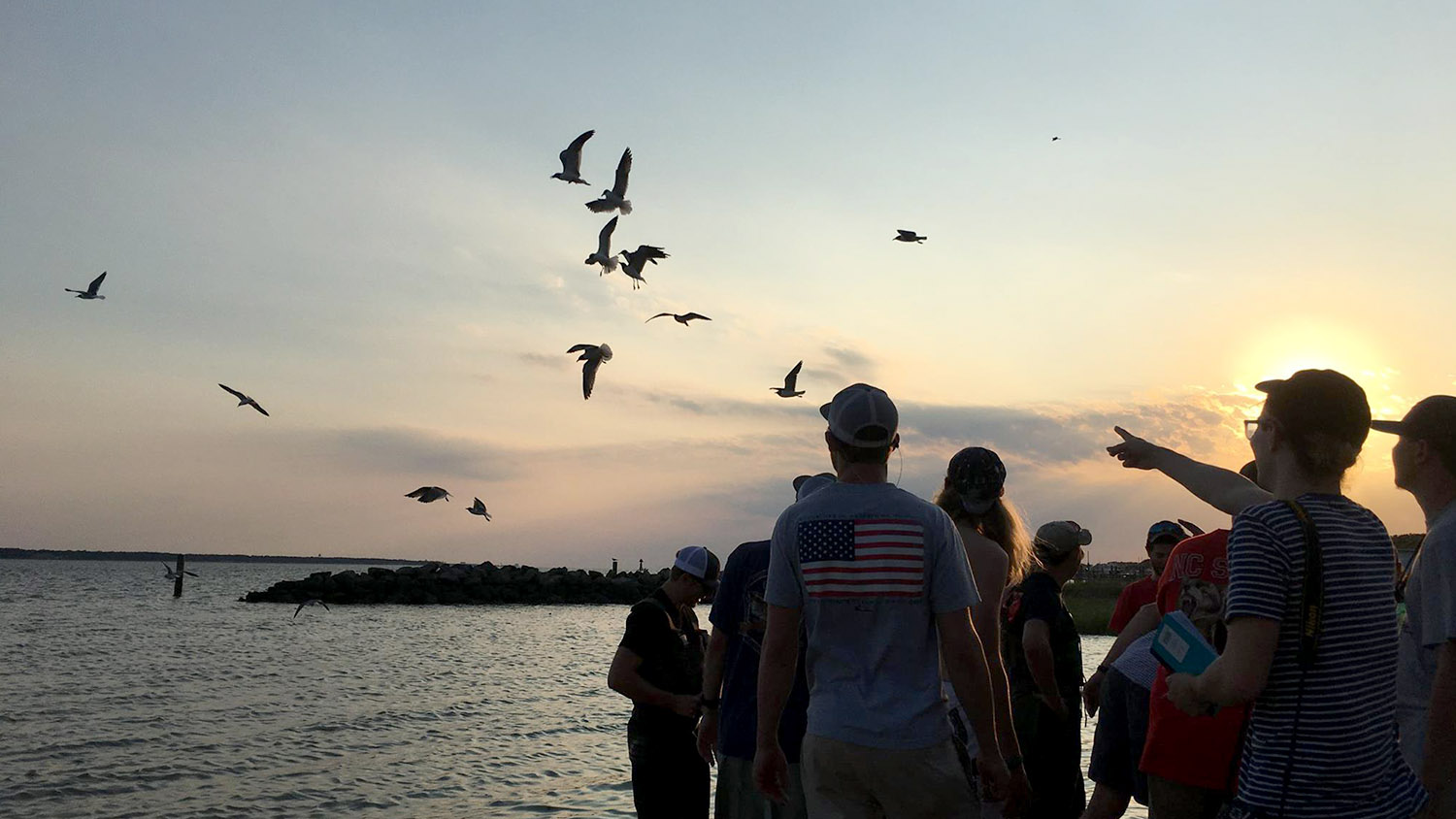 Students near water looking at birds - Fisheries, Wildlife, and Conservation Biology - Forestry and Environmental Resources Spotlight: William Casola - Forestry and Environmental Resources NCState University