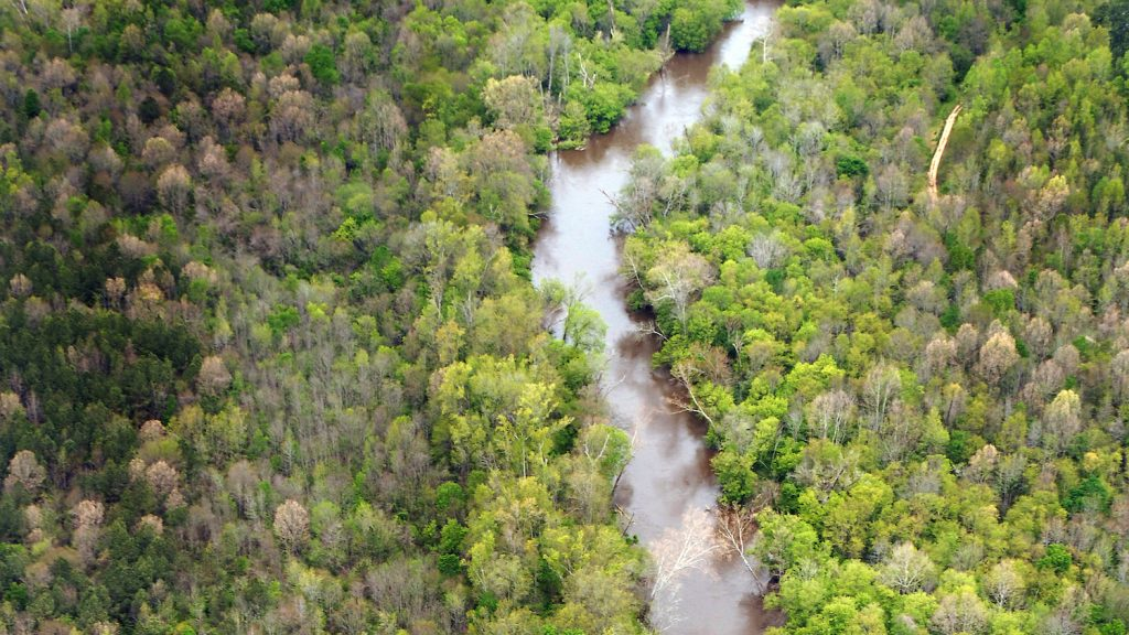 River - Natural Resources Economics and Policy - Forestry and Environmental Resources Spotlight: William Casola - Forestry and Environmental Resources NCState University