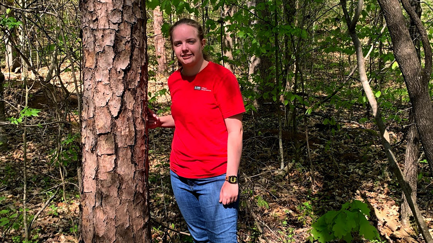 Madison Dezarn - CONNECT Program - Forestry and Environment Resources NCState University