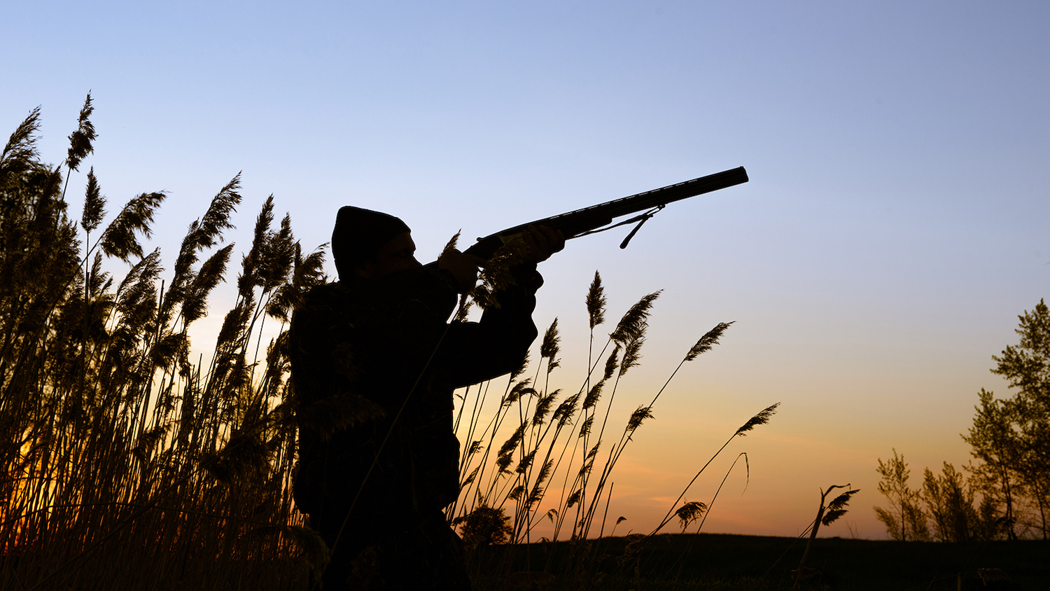 Hunter with a shotgun - Decline in Hunting Threatens Conservation Funding - Forestry and Environmental Resources NC State University
