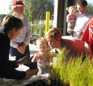 learning how to care for plants