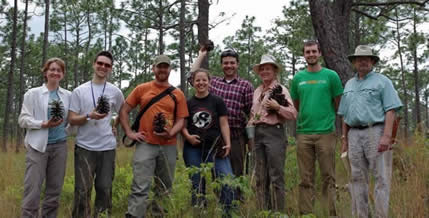 Dendrology Club in Croatan National Forest.