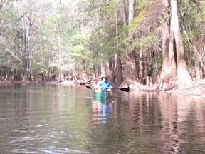 Canoeing Cedar Creek in Congaree National Park