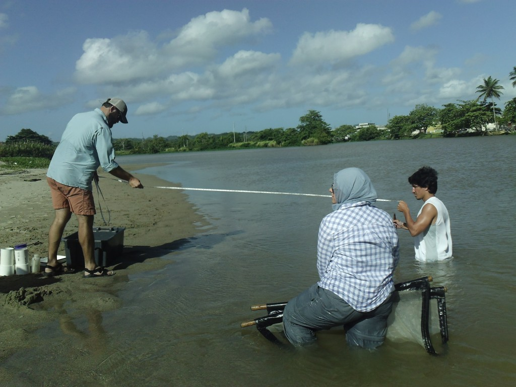Measuring distance and depth of the sample area, before a  round of ceti sampling with Dr. Jesse Fischer and JJ LaPlante in Arecibo River, Arecibo, Puerto Rico