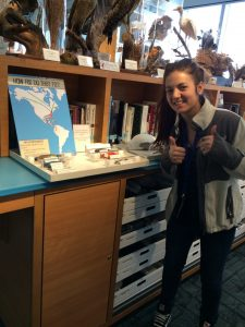 Author Sarah Roy with her internship project on bird migrations.