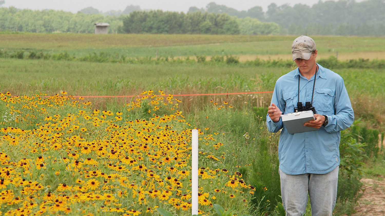 Grad student in the field