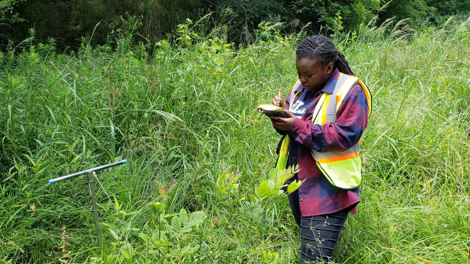 Neverson works in the field outside - Graduation to Vocation: Enhancing the Environment - Forestry and Environmental Resources NC State University