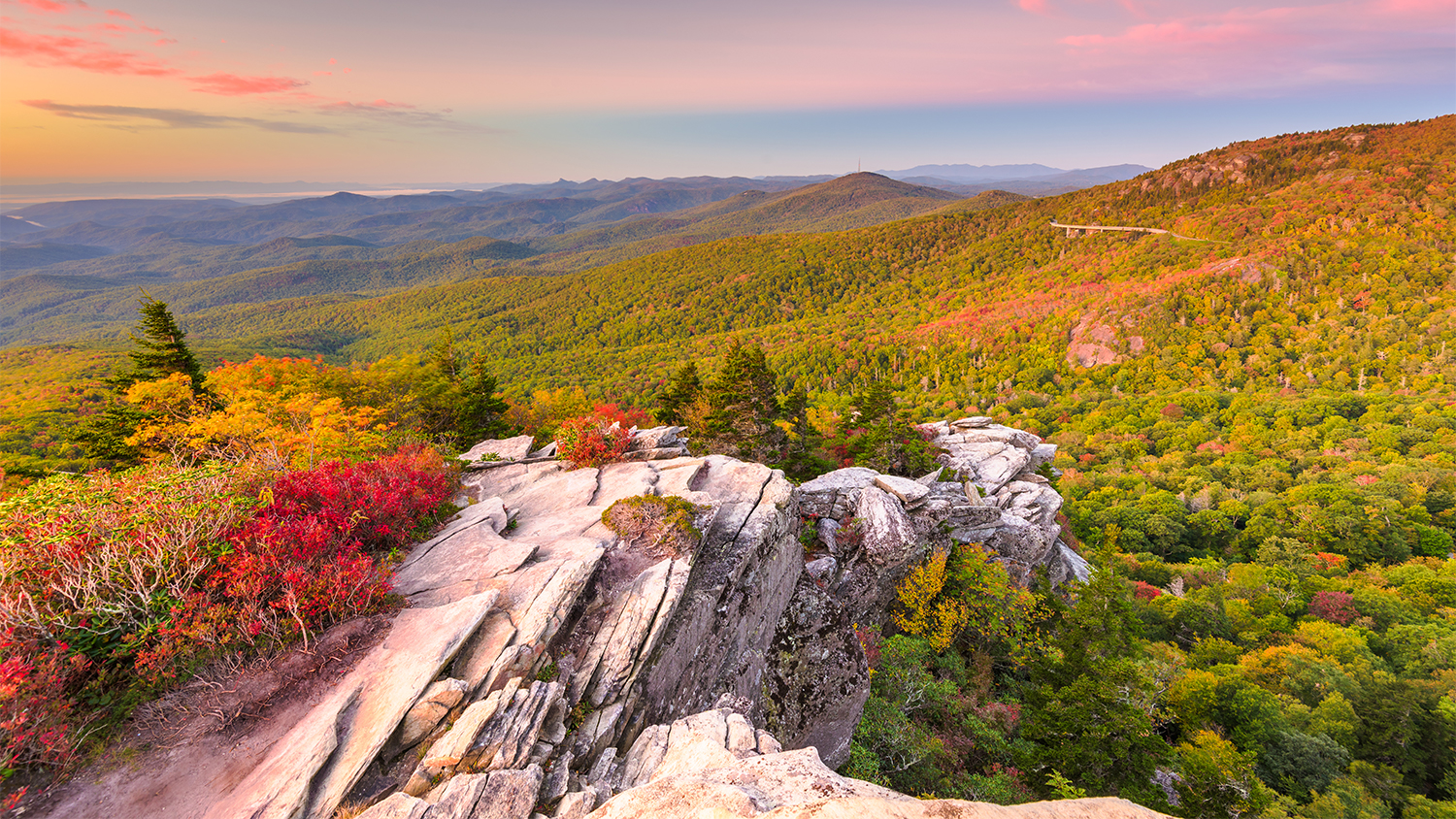 colorful leaves near mountains