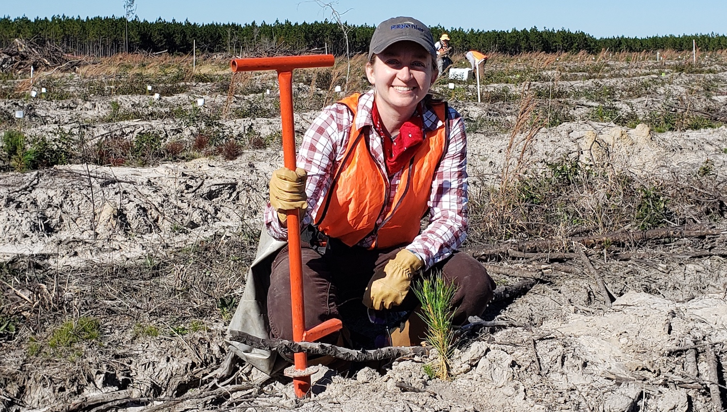 Rachel Cook - Faculty Profile: Rachel Cook - Forestry and Environmental Resources NC State University