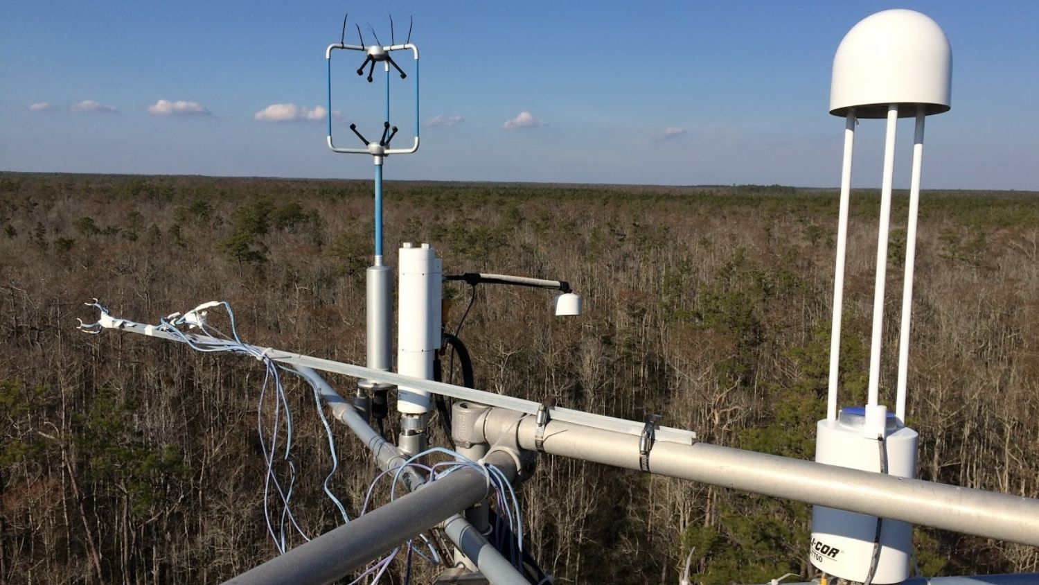 Meteorological sensors above a forest.