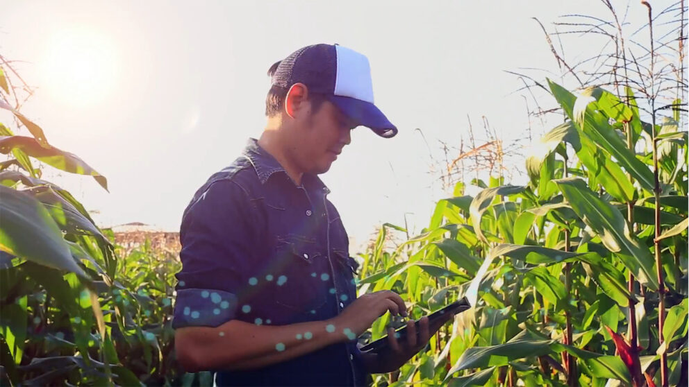 a grower collects data in an agricultural field