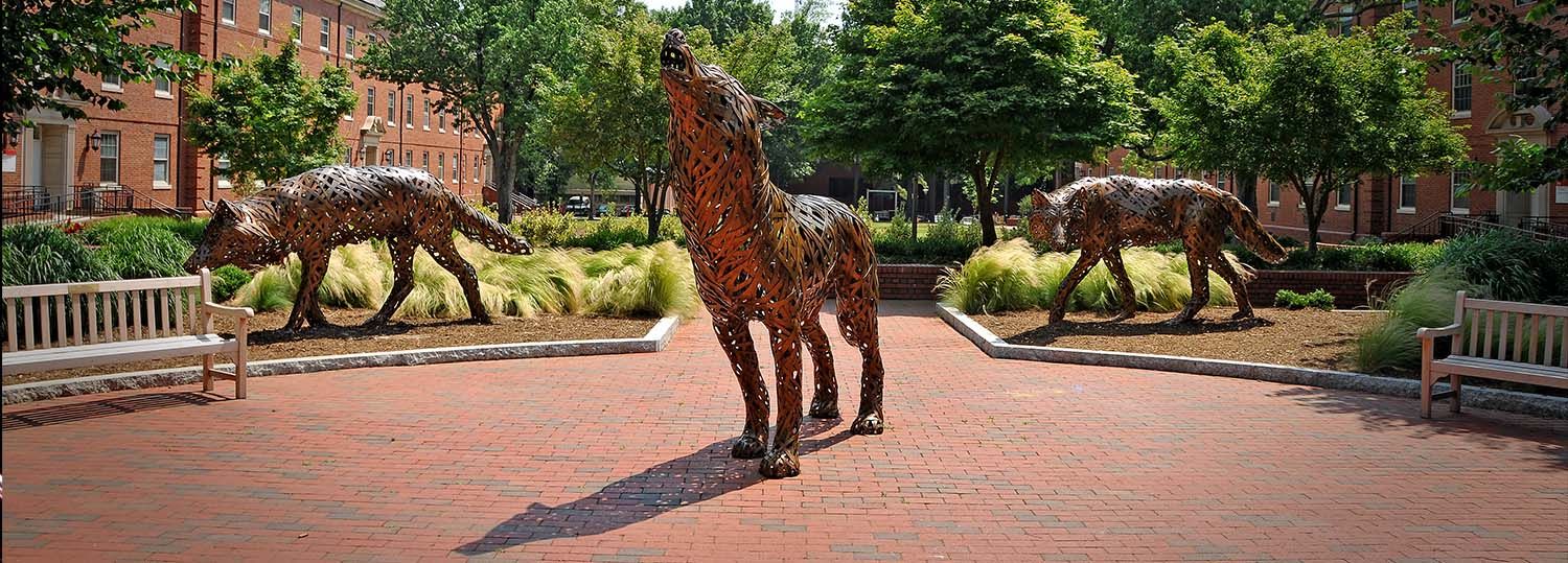 wolves - Internal Resources - College of Natural Resources Internal Resources NC State University