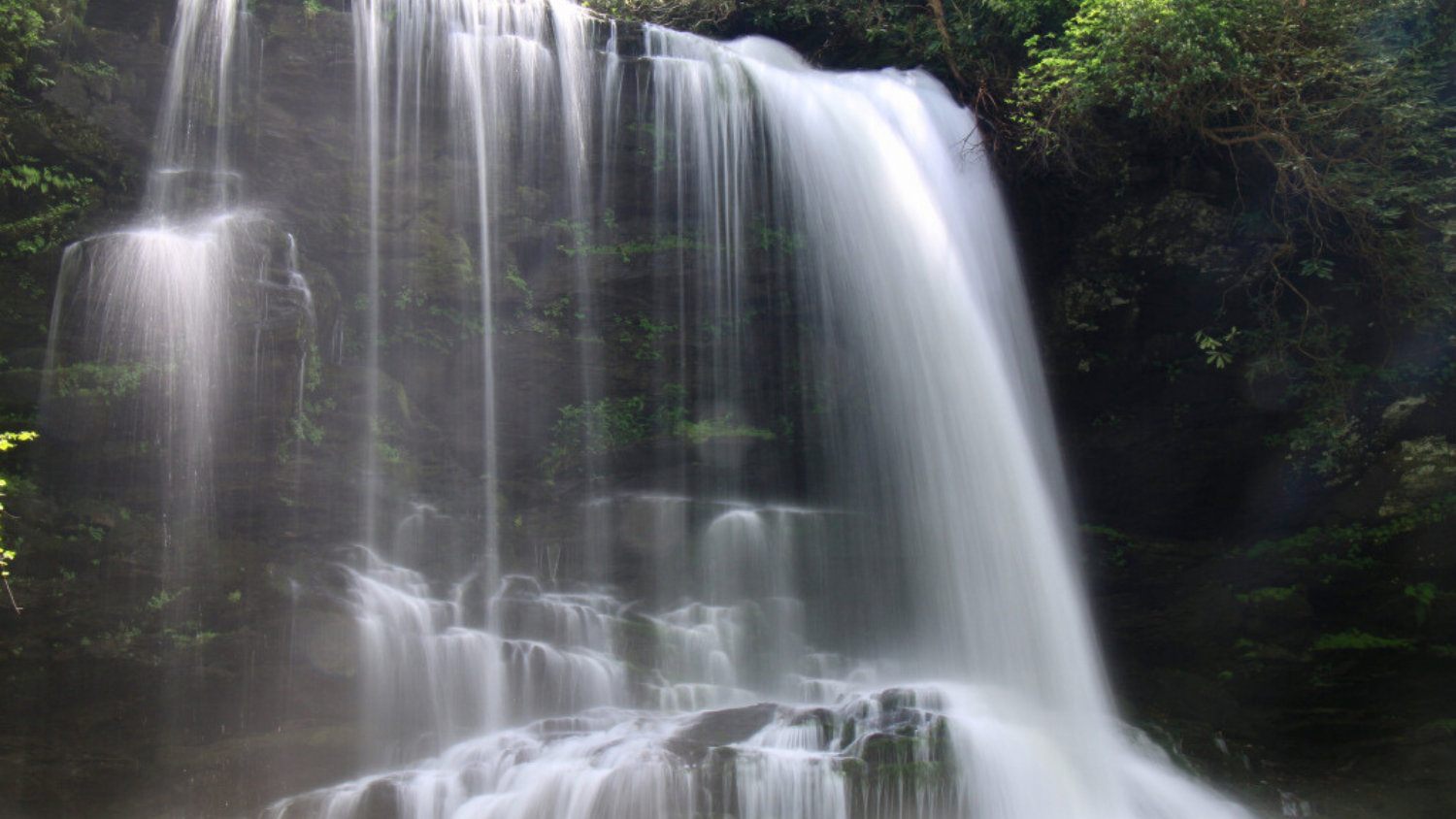 Which North Carolina State Park are you?, College of Natural Resources, Gorges State Park, courtesy Waterfall Hiker - 1