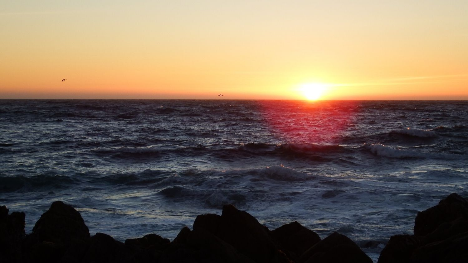 Which North Carolina State Park are you?, College of Natural Resources, Monterey Sunset - 1