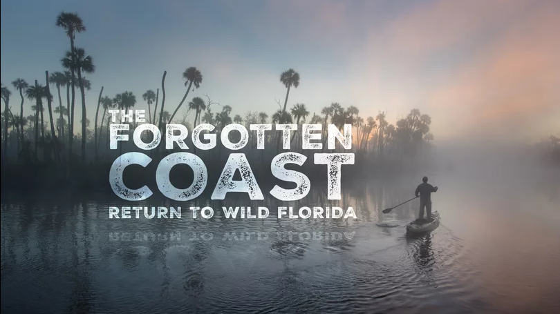 Forgotten Coast movie title screen