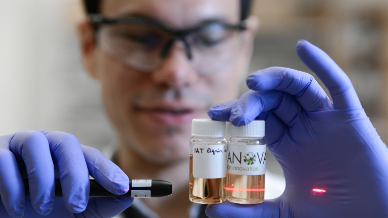 lignin research