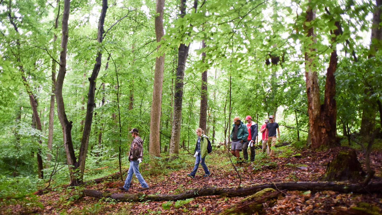 Students in Hill Forest during summer camp.