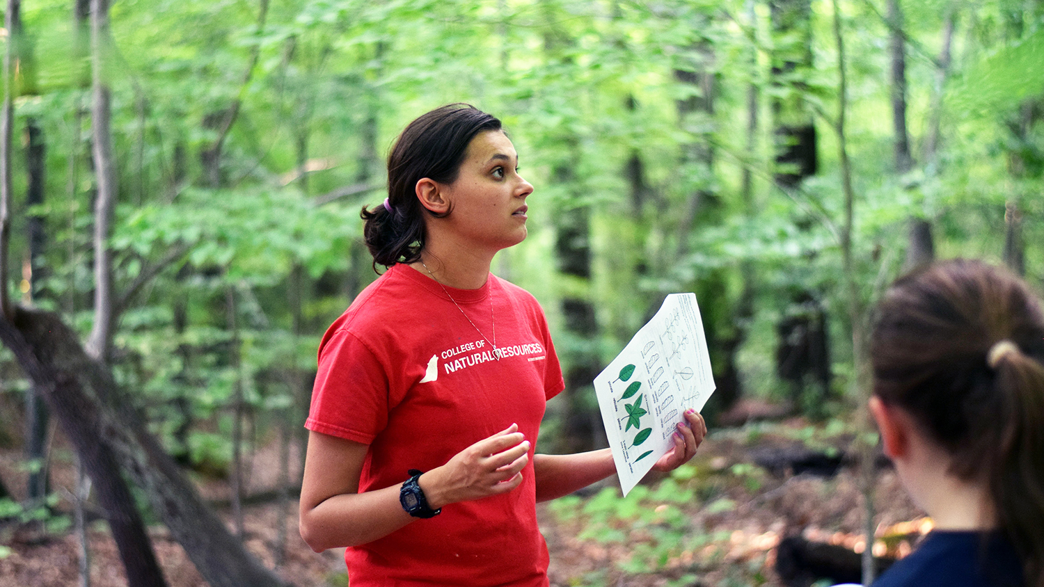 Sylvia Weir at Schenck Forest for Girl Scout Merit Badge Day