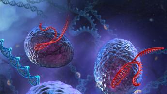 CRISPR graphic of gene drives