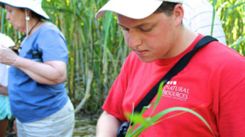 Forest Management Alumnus Thomas Harris