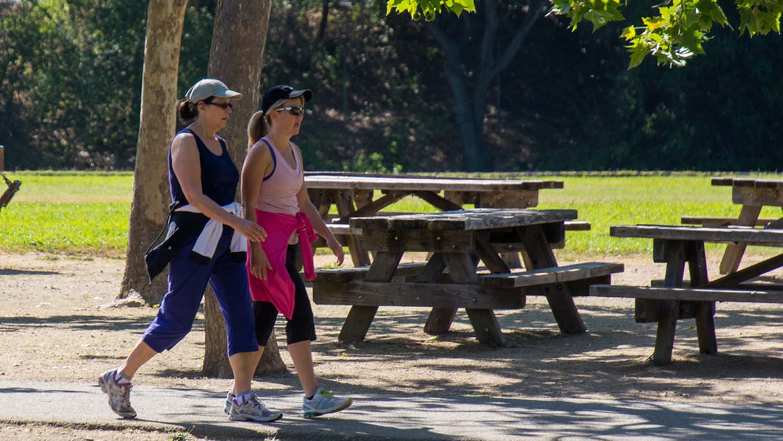 Women walking in park