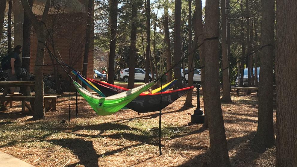 Students hammocking outside