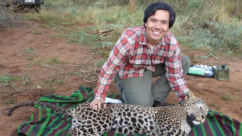 Student working in field with leopard