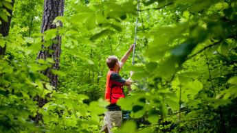 Student in forest conducting research