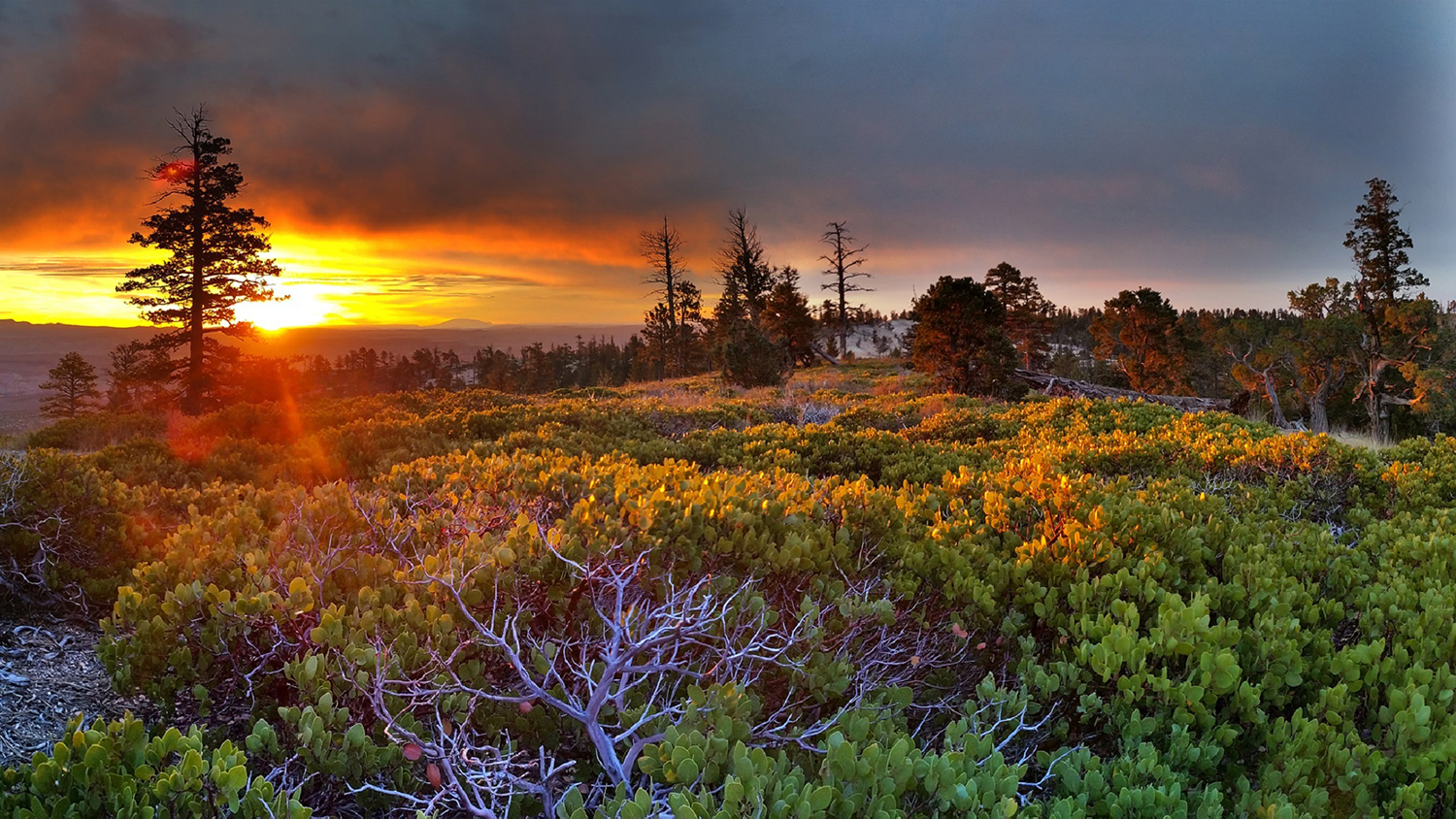 ttendance Trends Threaten Future Operations of America's State Park Systems