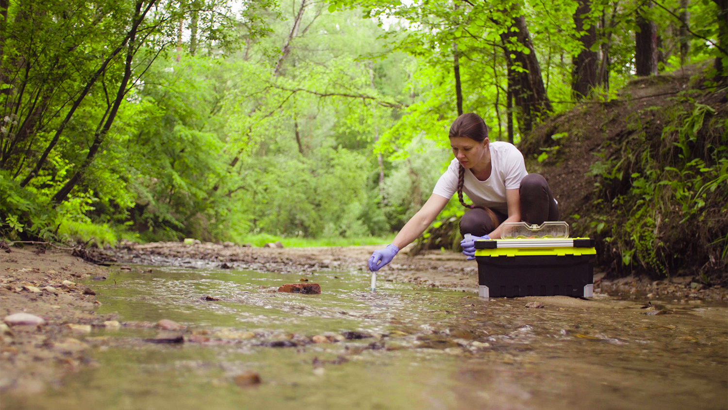 woman collects samples at stream