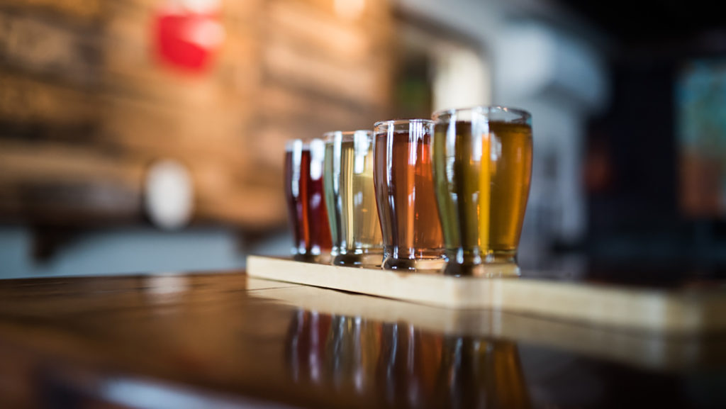 Urban Orchard Cider flight - Zachary Miller - College of Natural Resources