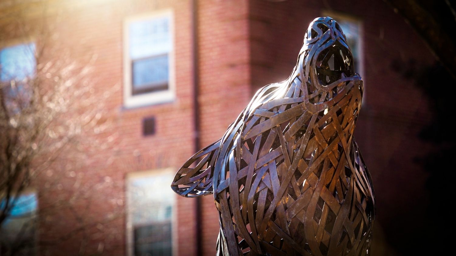 Meet Our Fall 2021 Incoming Students, College of Natural Resources, Wolf Plaza wolf with sun, feature
