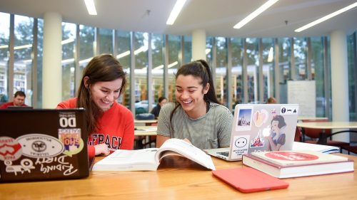 Friends Studying - Undergraduate - Parks Recreation and Tourism Management NC State