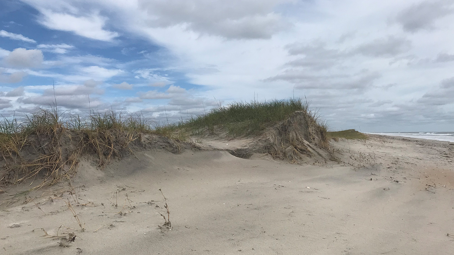 The Beach - Community Capacity and Resilience -Parks Recreation and Tourism Management NC State