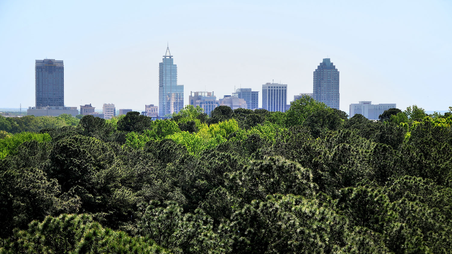 Raleigh North Carolina City View - Graduate Support -Parks Recreation and Tourism Management NC State
