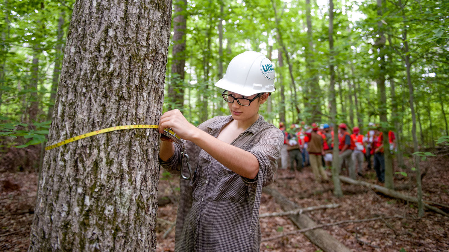 Measuring Trees - Academics - College of Natural Resources at NC State University