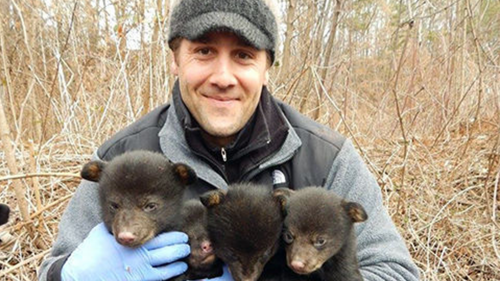 Nick Gould with bear cubs