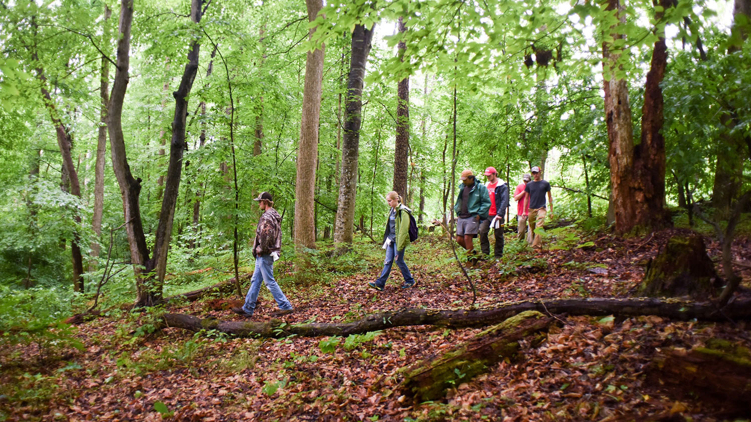 Students in the field - Extensions and Outreach - College of Natural Resources at NC State University