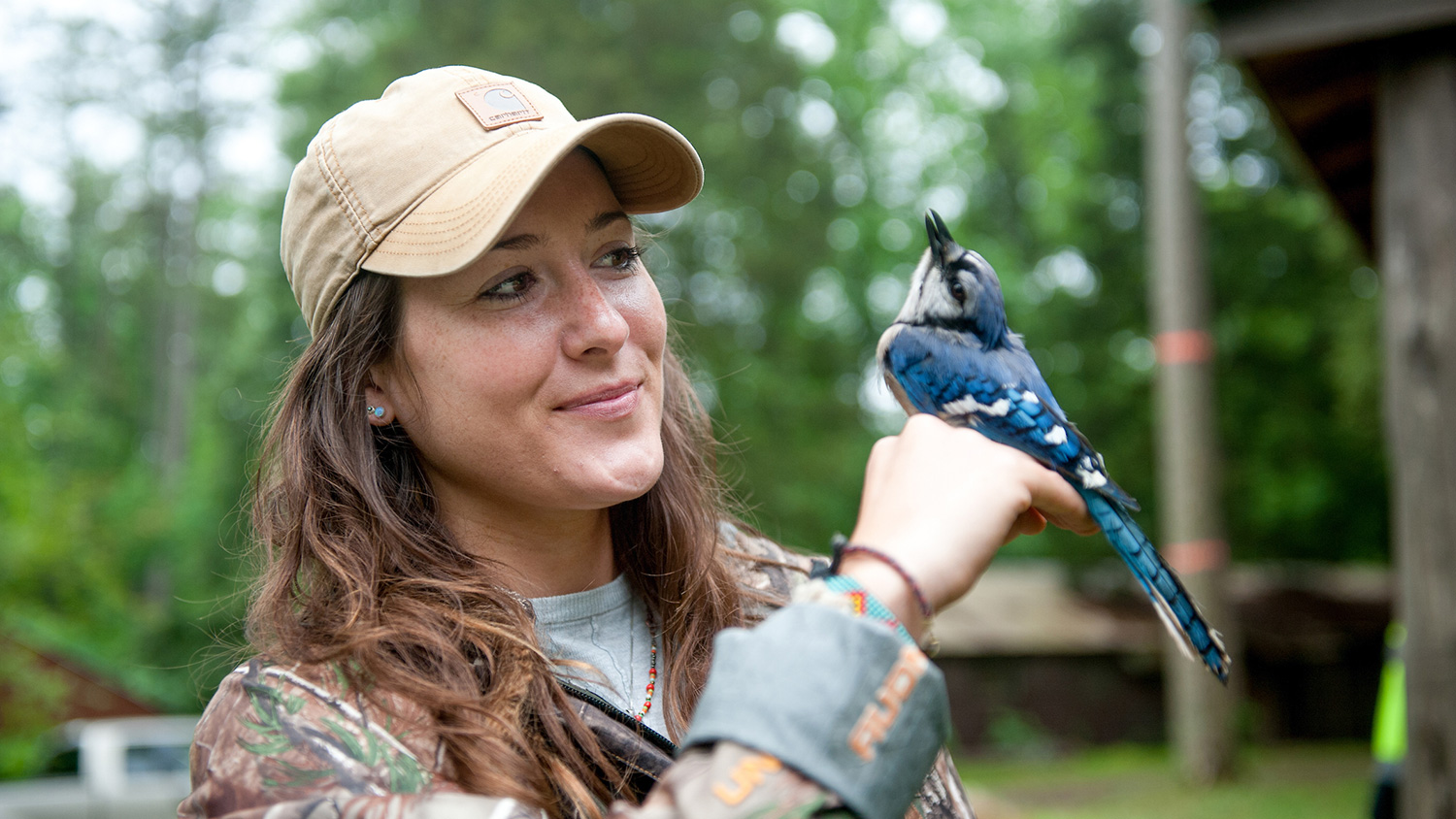 Students in the field- Career Connections - College of Natural Resources at NC State University