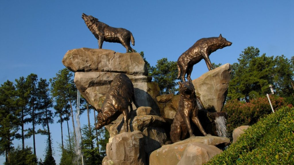 alumni wolves - Foundation - College of Natural Resources at NCState University