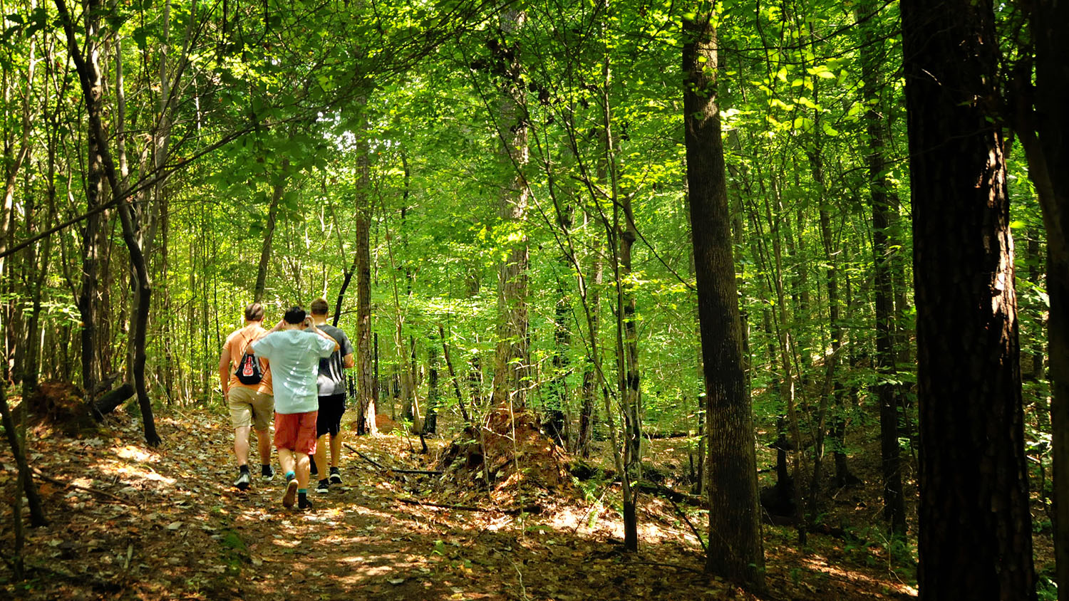 Students in Hoffman forest - Research - College of Natural Resources at NCState University