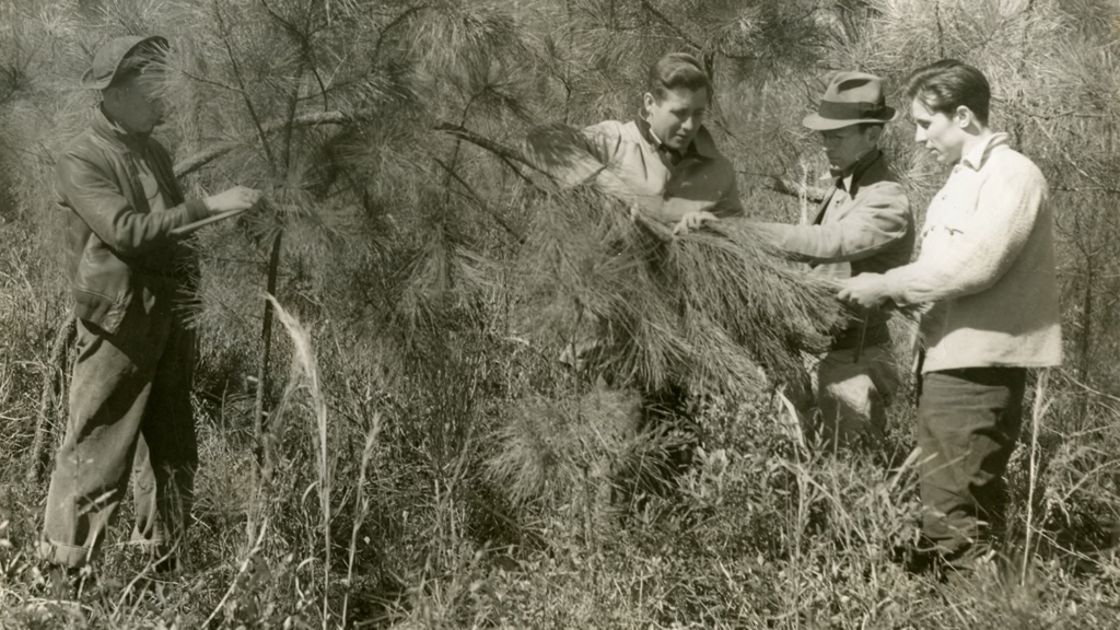 historical forestry students - History - College of Natural Resources at NCState University