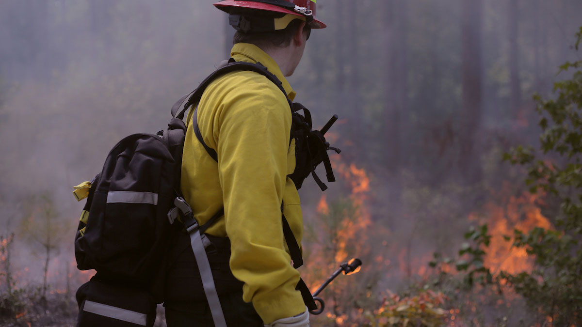 CNR Students checks his line of fire in a control forest burn - Think and Do the Extraordinary -College of Natural Resources NCState University