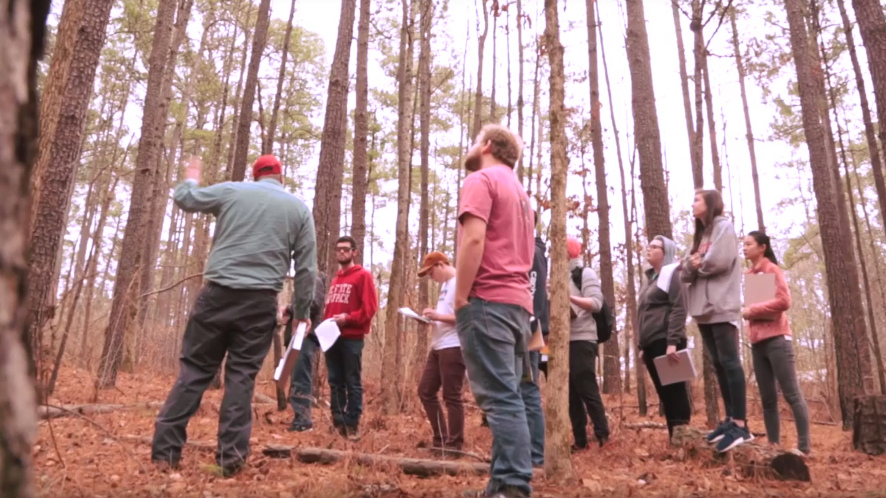 A group of students in a forest - Giving - College of Natural Resources NCState University