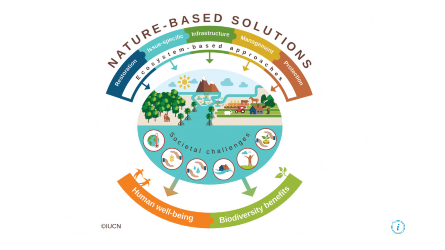 McIntire Stennis - Investigating Funding Mechanisms for Nature-Based Solutions to Urban Environmental Stressors - College of Natural Resources at NCState